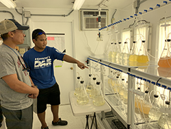 Patrick Gorong showing the algae lab and his work to Roseo Marquez of MCT